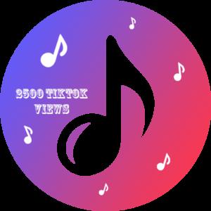 2500 TikTok Views